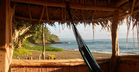 My elective in Vanuata (South Pacific)